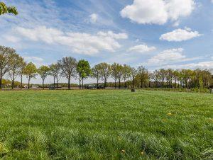 Het veld vanuit het huisje - Vakantiehuis De Meidoornhoeve Lage Mierde